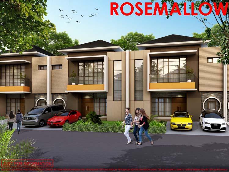 ROSEMALLOW 10X15-TAMPAK